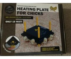 Heated plate for chicks