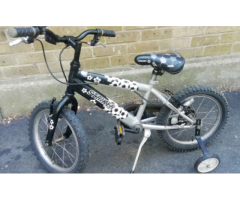 RALEIGH (STRIKER) KIDS BIKE