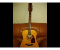 12 string fender acoustic guitar dg 18 12
