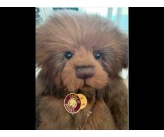Jimbob Charlie Bear