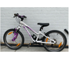 Specialized Hotrock 20 inch Kids Bicycle